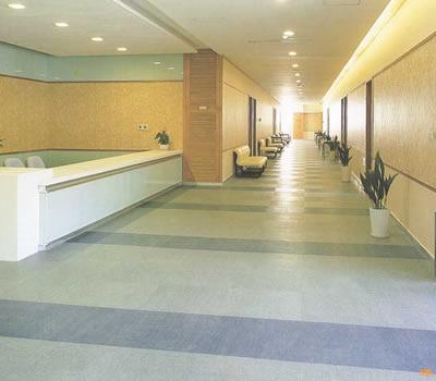 卷材PVC地板